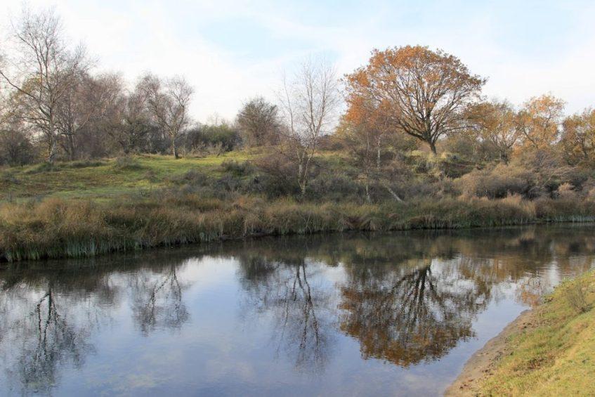 Wat te doen in omgeving Zandvoort? Breng een bezoek aan de Amsterdamse Waterleidingduinen