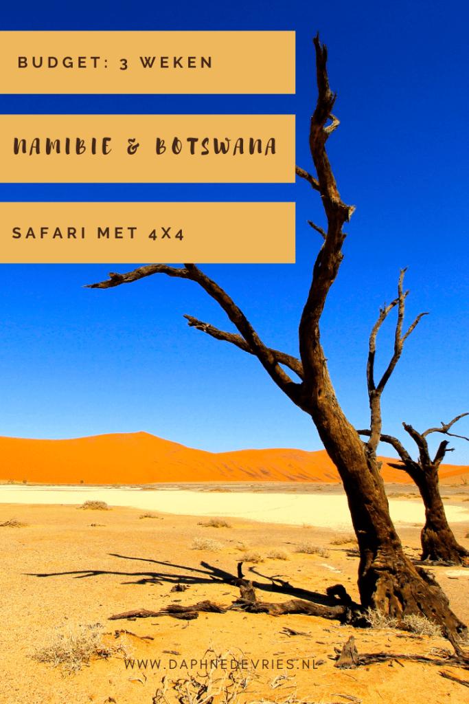 Budget Namibië & Botswana: Dit kost 3,5 weken rondreizen