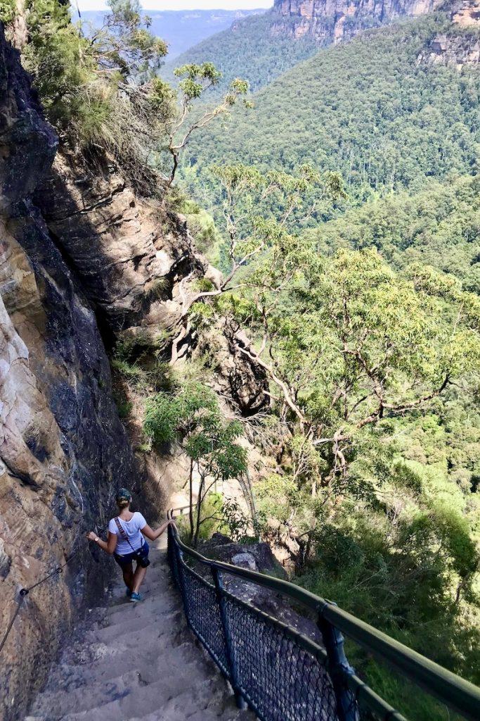 Wandel bij Wenthworth Falls in de Blue Mountains en geniet van de mooiste uitzichtpunten