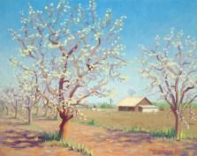 """A Barn in the Blossoms"" by Daphne Wynne Nixon"