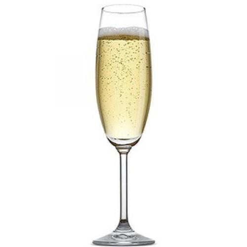 White-Champagne-500x500