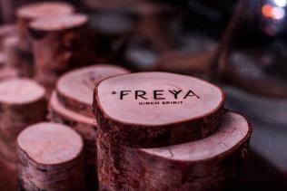 freya-coaster