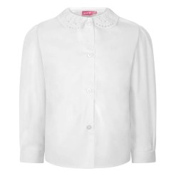 White Long Sleeve Lace Collar Blouse