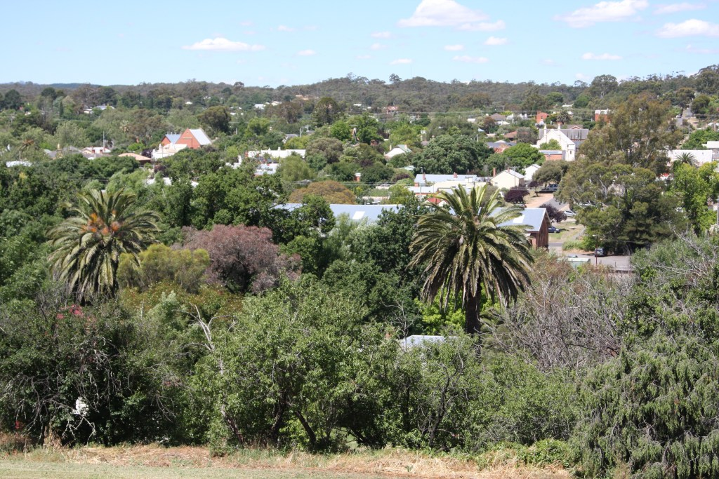 city of Castlemaine, Australia from above on a hill