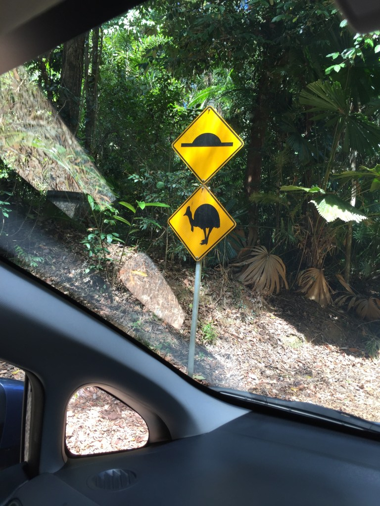 road signs in the Daintree Rainforest