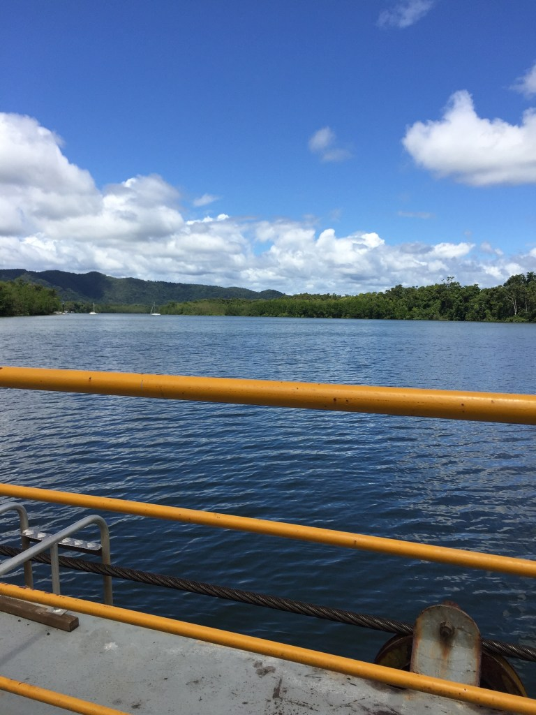 view from the Cable Ferry in Daintree Rainforest