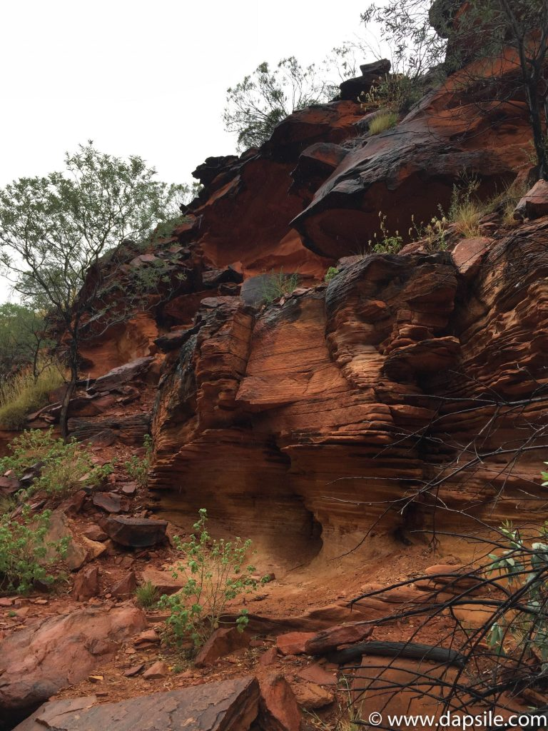 Layers of Rock in Kings Canyon on tour from Alice Springs to Uluru