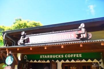 Starbucks 2