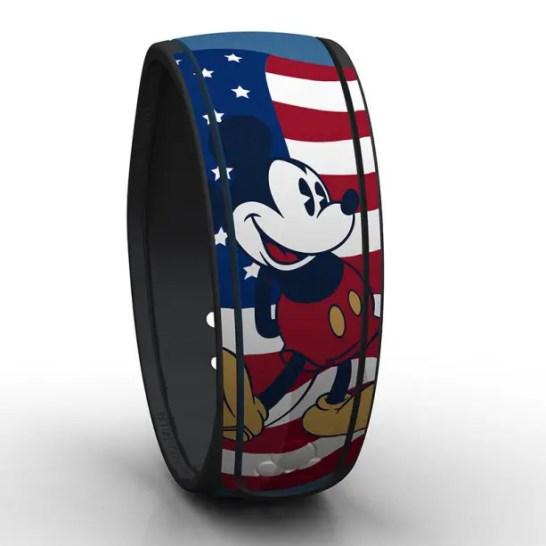 USA_DisneyParks (5)