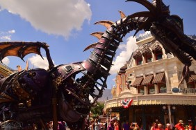 MagicKingdom 166