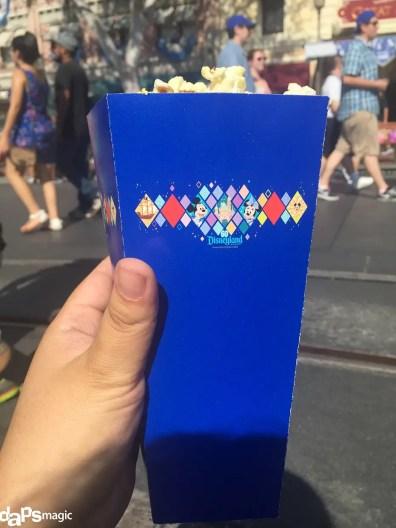 $40_Disneyland (19)