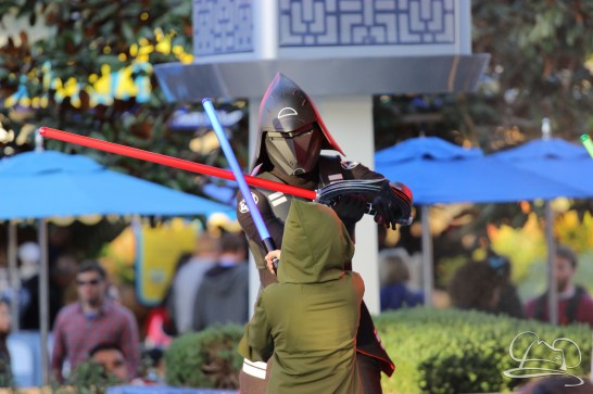 Jedi Training Trials of the Temple Disneyland-174