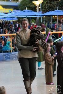 Jedi Training Trials of the Temple Disneyland-238