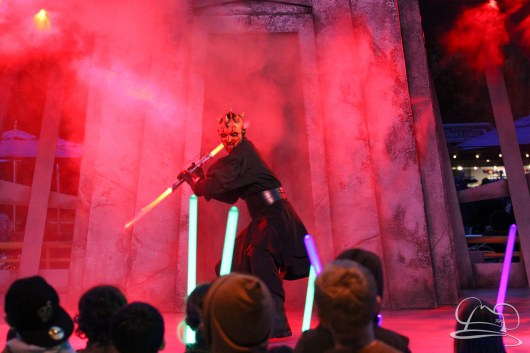 Jedi Training Trials of the Temple Disneyland-342
