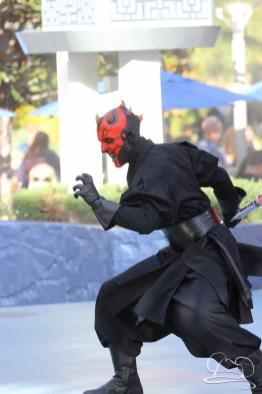 Jedi Training Trials of the Temple Disneyland-91