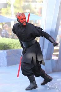 Jedi Training Trials of the Temple Disneyland-92