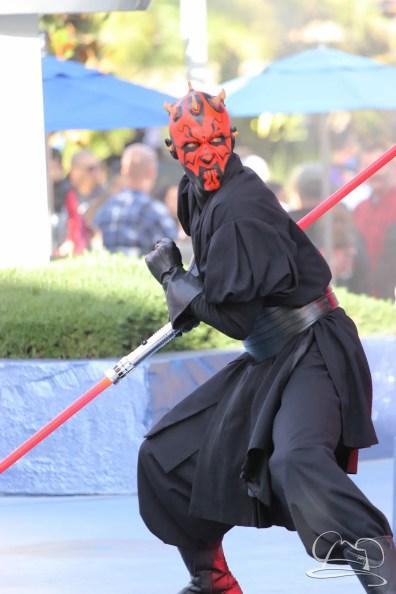 Jedi Training Trials of the Temple Disneyland-97