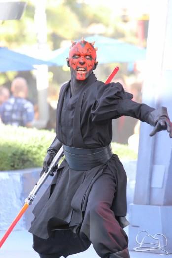 Jedi Training Trials of the Temple Disneyland-98