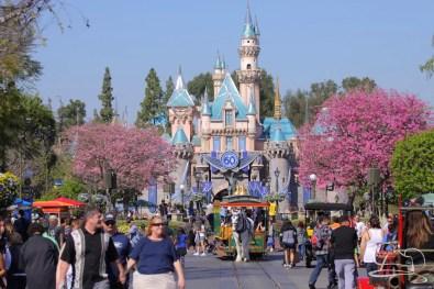 Springtime at Disneyland - February_21_2016-2