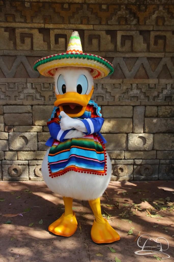 Walt Disney World - Day 1-105