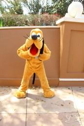 Walt Disney World - Day 1-30