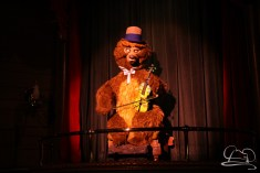 Walt Disney World Day 2 - Magic Kingdom-40