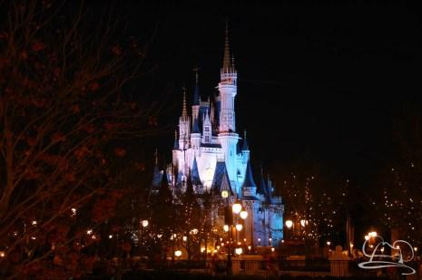 Walt Disney World Day 2 - Magic Kingdom-93