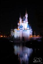 Walt Disney World Day 2 - Magic Kingdom-94