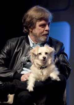 LONDON, ENGLAND - JULY 17: Mark Hamill on stage during Future Directors Panel at the Star Wars Celebration 2016 at ExCel on July 17, 2016 in London, England. (Photo by Ben A. Pruchnie/Getty Images for Walt Disney Studios) *** Local Caption *** Mark Hamill