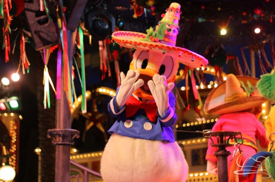 Disneyland Holidays Final Day-115