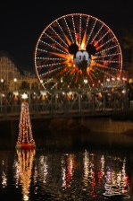 Disneyland Holidays Final Day-134