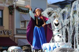 Disneyland Holidays Final Day-19