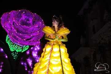 Disneyland Holidays Final Day-192