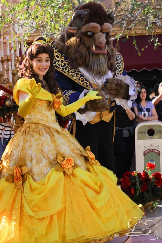 Disneyland Holidays Final Day-47