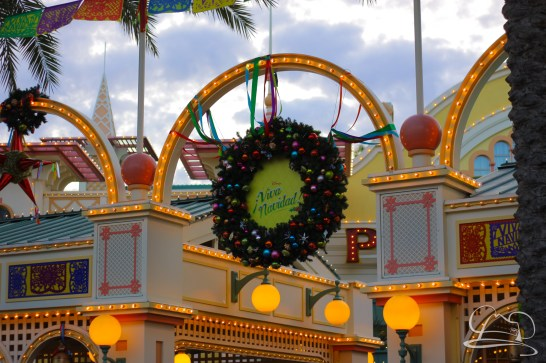 Disneyland Holidays Final Day-72