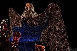 DisneylandElectricalParade 120