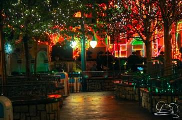 DisneylandResortRainyDay-173