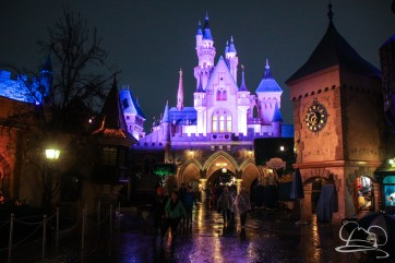 DisneylandResortRainyDay-181