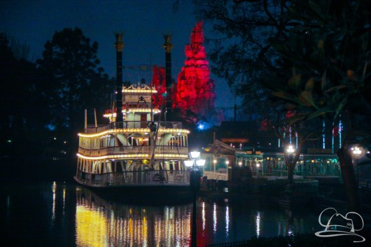 DisneylandResortRainyDay-205