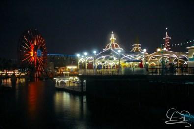 DisneylandResortRainyDay-96