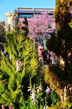 DisneylandSpringtime 6
