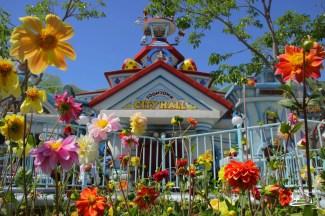DisneylandResortSundayMay212017-10