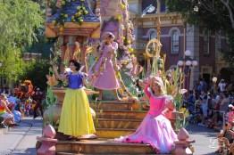 DisneylandResortSundayMay212017-35