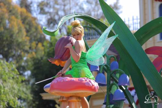 Disneyland-125
