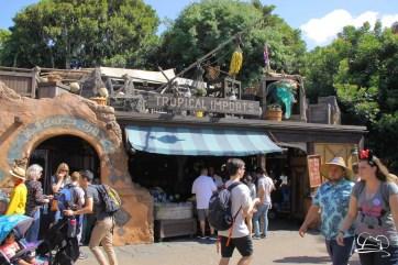 Disneyland-47