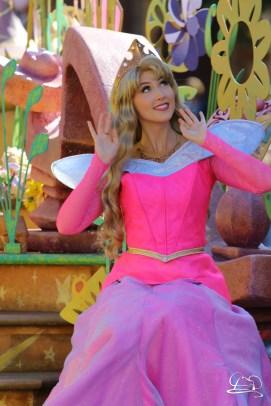 Disneyland_Updates_Sundays_With_DAPs-43