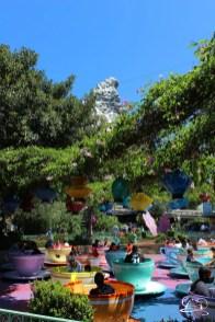 Disneyland_Updates_Sundays_With_DAPs-8