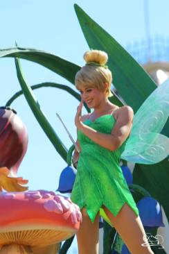 Disneyland_Updates_Sundays_With_DAPs-83