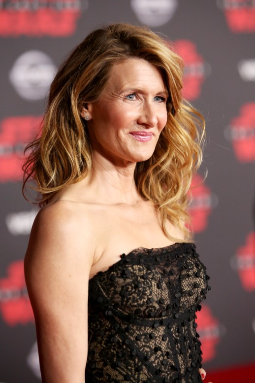 LOS ANGELES, CA - DECEMBER 09: Actor Laura Dern at Star Wars: The Last Jedi Premiere at The Shrine Auditorium on December 9, 2017 in Los Angeles, California. (Photo by Jesse Grant/Getty Images for Disney) *** Local Caption *** Laura Dern