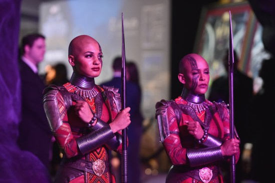 HOLLYWOOD, CA - JANUARY 29: View of atmosphere at the Los Angeles World Premiere of Marvel Studios' BLACK PANTHER at Dolby Theatre on January 29, 2018 in Hollywood, California. (Photo by Alberto E. Rodriguez/Getty Images for Disney)